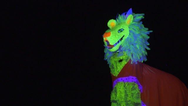 Making of «Karneval der Tiere»